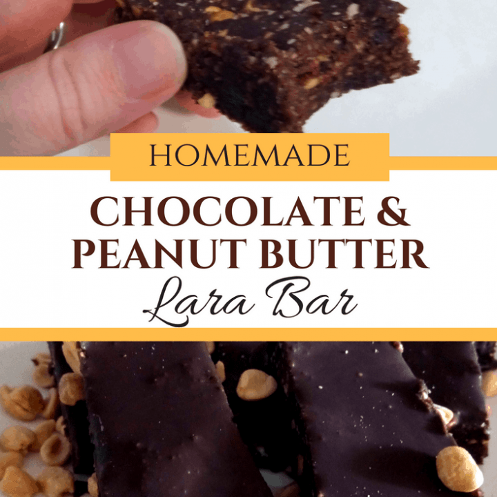 Homemade Chocolate Peanut Butter Lara Bars
