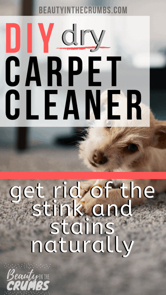 simple, natural, and non toxic DIY homemade Dry Carpet Cleaner to lift stains, deodorize, and kill built up bacteria.