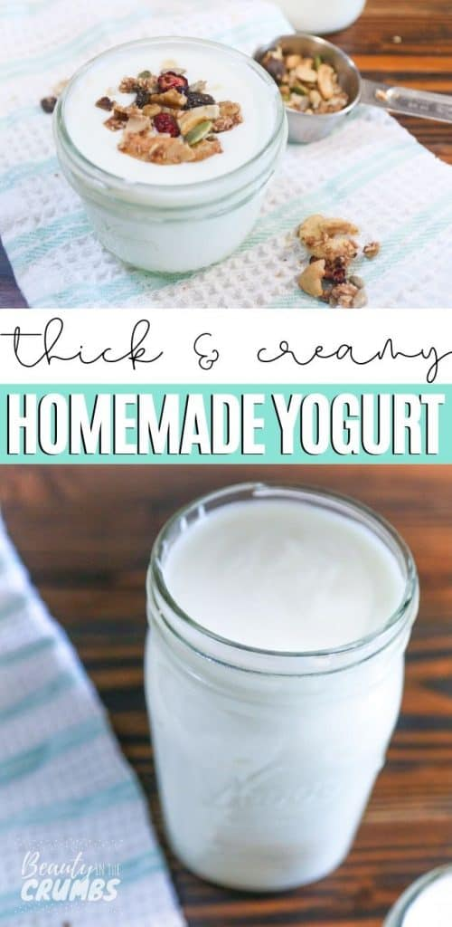 EASIEST method Homemade yogurt that is thick and creamy every time