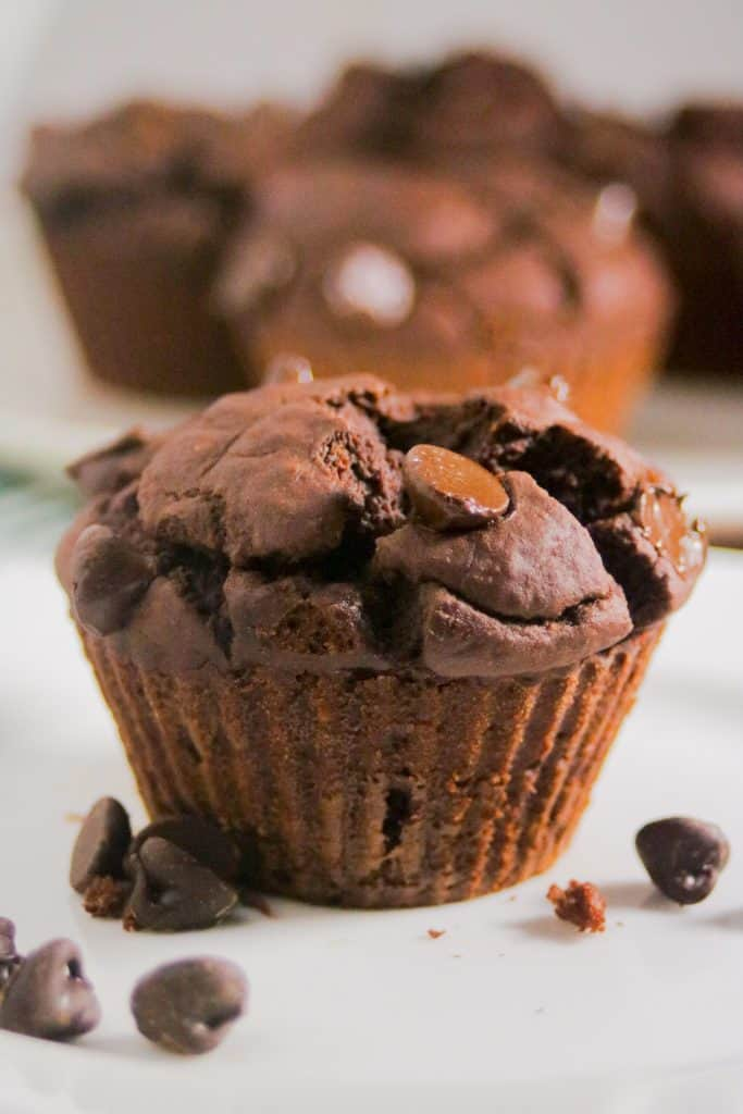 Healthy double chocolate blender muffins recipe with pumpkin or banana